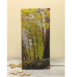Irish Woodlands in Autumn - blank card