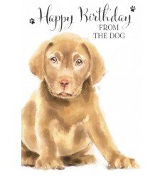 From the DOG birthday card v2