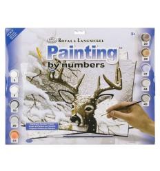 Reindeer Paint By Numbers - Adult