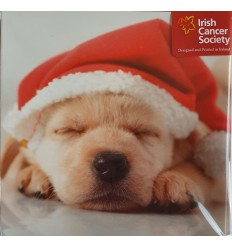 Irish Cancer Society - Puppy Christmas Cards