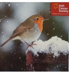 Irish Cancer Society - Robin Christmas Cards