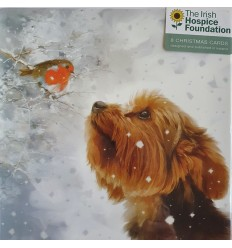 Irish Hospice Foundation - Robin and dog