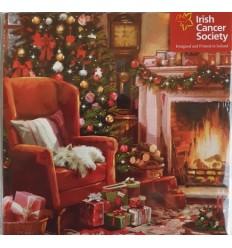 Irish Cancer Society - Christmas Fireside