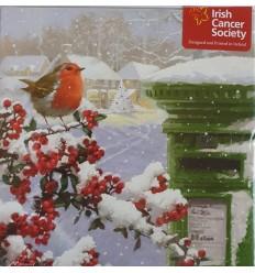 Irish Cancer Society - Robin & Green Irish Postbox