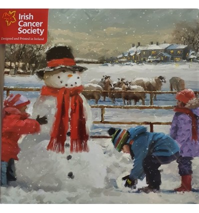 Irish Cancer Society - Building a snowman