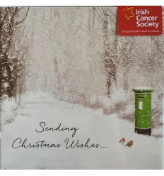 Irish Cancer Society - Snow scene with green postbox