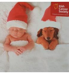 Irish Cancer Society - Baby & Puppy in Christmas hats