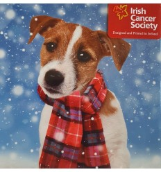 Irish Cancer Society - Puppy with scarf