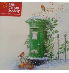 Irish Cancer Society - Postbox and robin