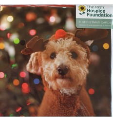 Irish Hospice Foundation - Puppy with antlers