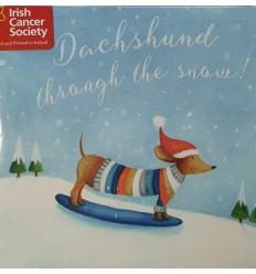 Irish Cancer Society - Dachshund on snowboard!