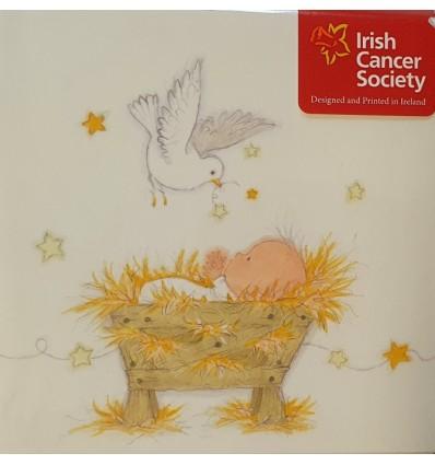 Irish Cancer Society - Baby and dove