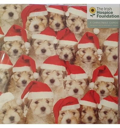 Irish Hospice Foundation - Puppies in Santa hats