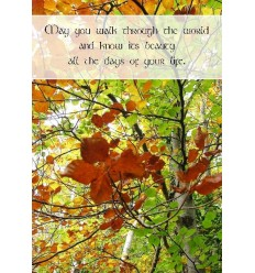 Sentiment Card - May you walk through the world...