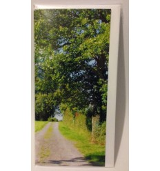 Irish Country Road - blank card